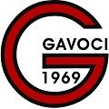Gavoci